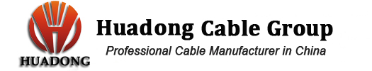 Huadong Cable Group Logo